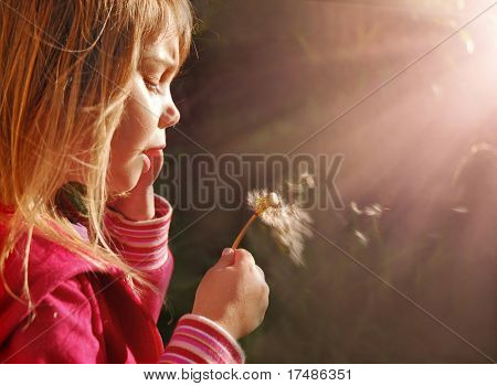 Magic light, little girl blowing dandelion at sunset