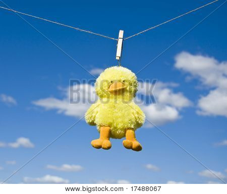 Funny toy duck hanging on line