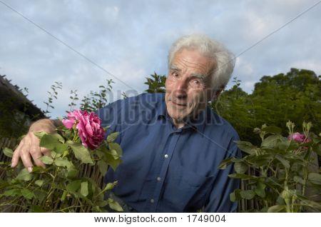 Jardinería Senior