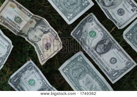 Money In Clovers S