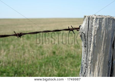 Old Wooden Post And Barbed Wire