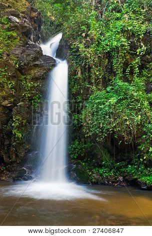 Line Waterfall And Green Leaves Of A Rainforest