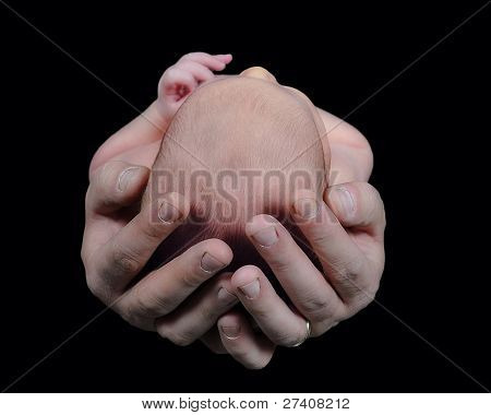 Father Holding Infant Child's Head. Isolated On Black