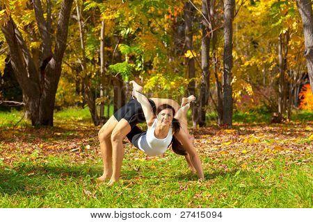 Yoga Dhanurasana Under Urdhva Dhanurasana Pose