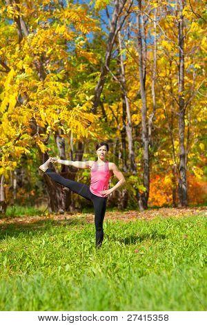 Yoga Utthita Parshvasahita