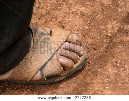 Sandalled Feet Of Farmer