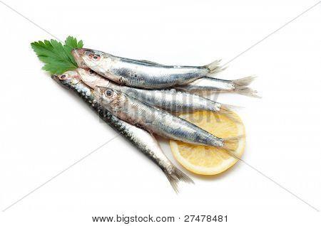 sardines with lemon on white