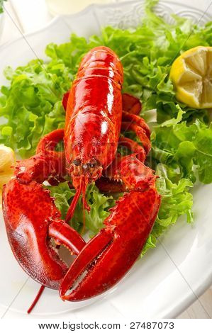 whole lobster with salad