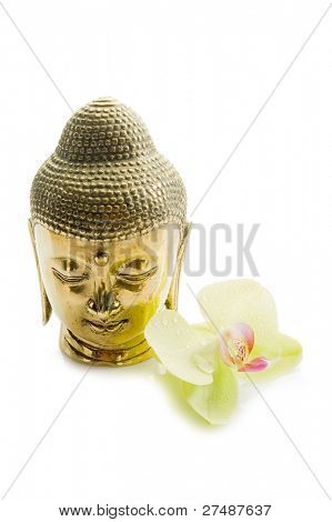 buddha head with orchid spa concept