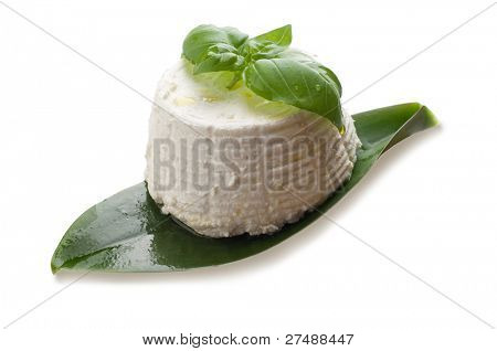 ricotta and basil isolated on white background