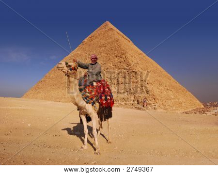 Bedouin And Pyramid