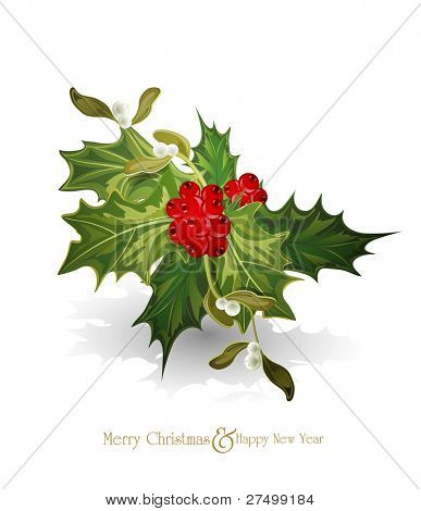 christmas background with sprig of European holly  (Ilex aquifolium) and white  mistletoe