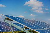 Solar Panels On The Sky Background. Solar Power Plant. Blue Solar Panels. Alternative Source Of Elec poster