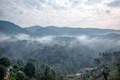 Morning Landscape And Mist In Bwindi Impenetrable National Park poster