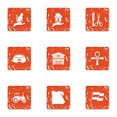 Preserve Icons Set. Grunge Set Of 9 Preserve Icons For Web Isolated On White Background poster