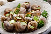 stock photo of escargot  - bourguignonne snail au gratin - JPG