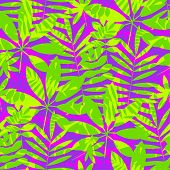 Tropical Leaves In Rgb Vivid Violet And Green Colors. Seamless Vector Pattern. Exotic Summer Tile Mo poster