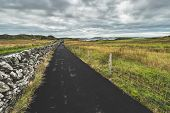 Asphalt road along the grass fields to the ocean. Northern Ireland. Stunning countryside landscape.  poster