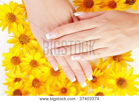 Fingernails And Flowers