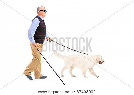 Retrato de cuerpo entero de un ciego con bastón y su perro, aislado en blanco centrico