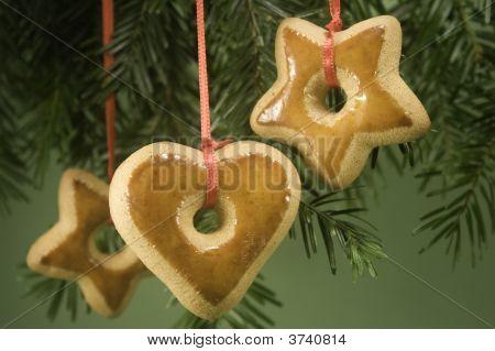 Cookies Under Tree