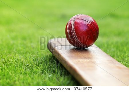 Cricket ball resting on a cricket bat on green grass of cricket pitch
