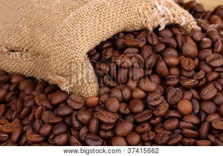 Coffee beans in bag close-up