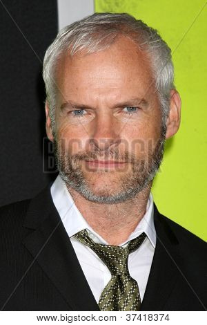 LOS ANGELES - OCT 30:  Martin McDonagh  at the