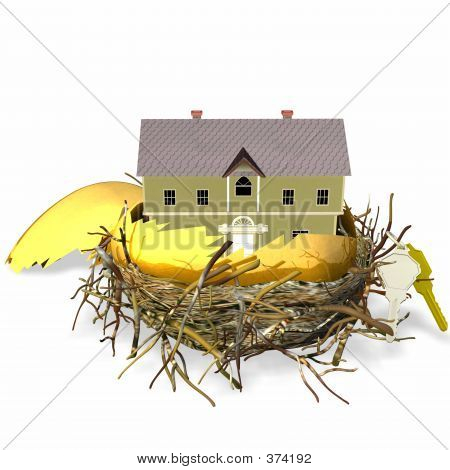 Real Estate Nest Egg