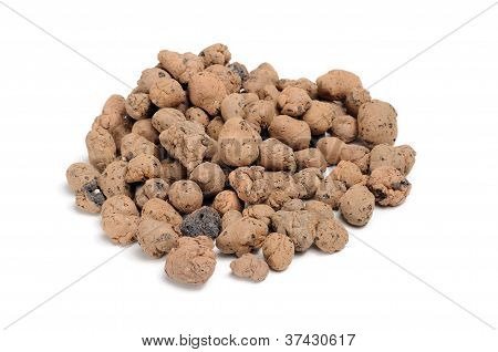 Expanded Clay Aggregate (Grow Rocks)