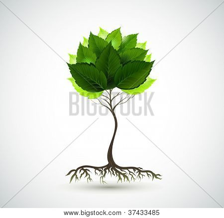 raster version of Season young tree with green leaves