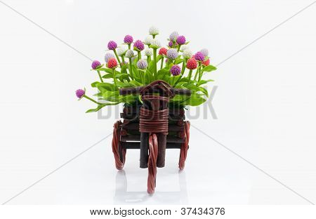 flower on basket