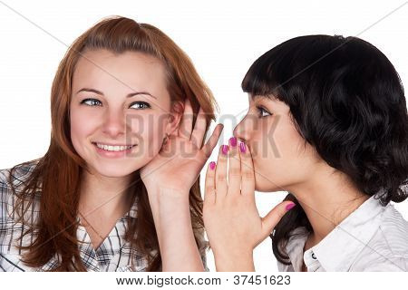 Two happy young girlfriends talking isolated on white background
