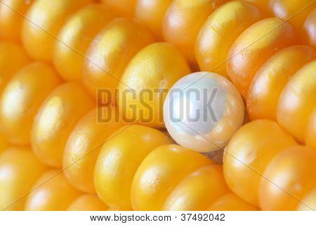 Pearl Ear Stud on Maize Corns