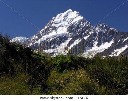 Mt. Cook 2
