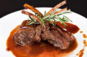 foto of lamb chops  - Roasted Lamb Chops on Tomato Sauce - JPG