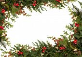 foto of mistletoe  - Christmas traditional border of holly - JPG