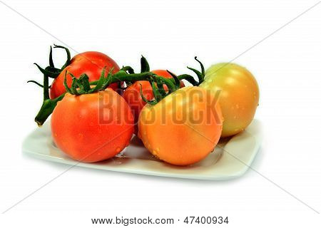 Bunch of red tomatoes on white