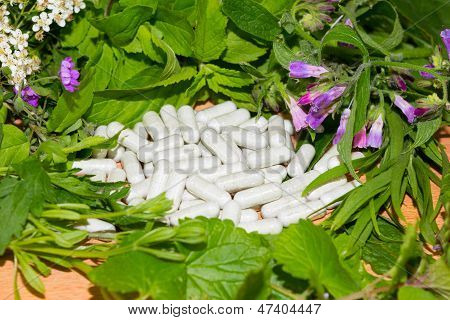 Border Of Fresh Herbs With Supplement Capsules