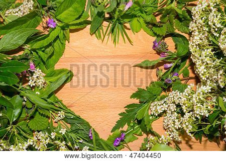 Border Of Fresh Herbs With Wood Texture