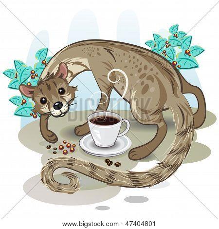 Civet Coffee Kopi Luwak
