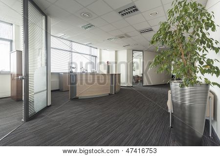 Hall In Office