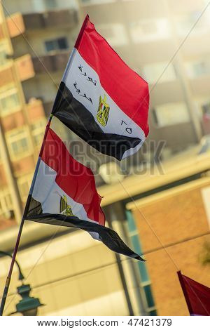 Egyptian Flags