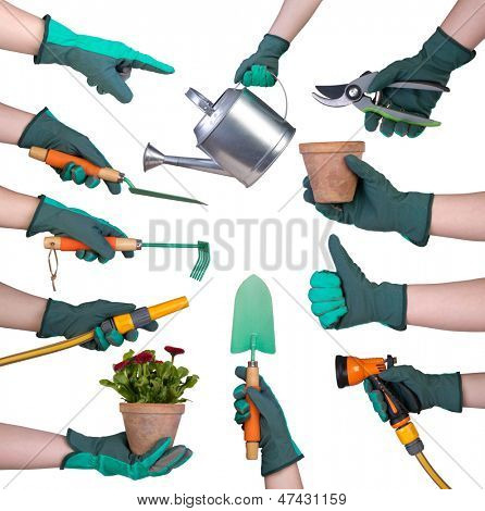Hand in a glove holding gardening tools isolated on white background