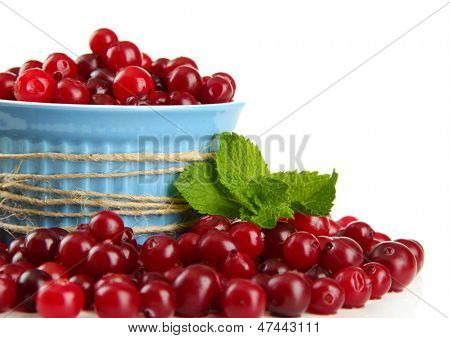 Ripe red cranberries in bowl, isolated on white