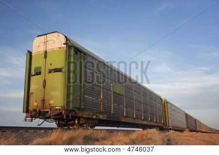 Train Of Old Stock Rail Cars For Livestock Transportation