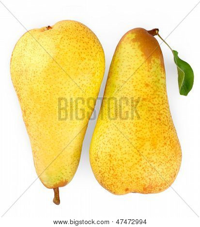 Two Ripe Yellow Pears On White Background, Close Up