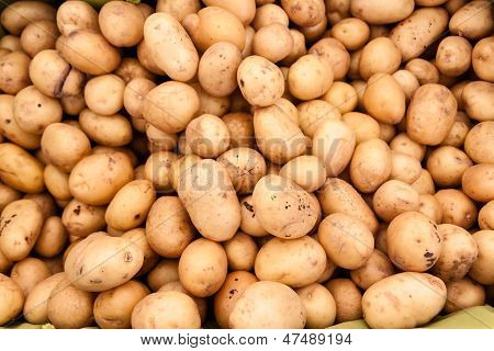 Small white potatoes