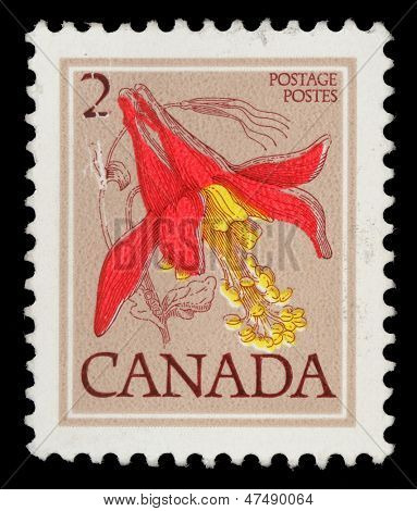 CANADA - CIRCA 1977: A stamp printed in Canada shows Flower: Red columbine, from the series