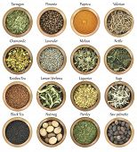 picture of saw-palmetto  - Collection of metal bowls full of herbs and spices - JPG